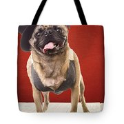 Cute Pug Dog In Vest And Top Hat Tote Bag by Edward Fielding