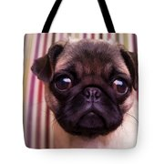 Cute Pug Puppy Tote Bag