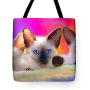 Cute Siamese Kittens Cats  Tote Bag by Svetlana Novikova