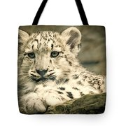 Cute Snow Cub Tote Bag