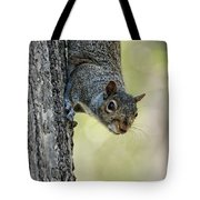 Cute Squirrel  Dare Me Tote Bag