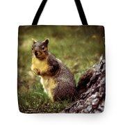 Cute Squirrel Tote Bag by Robert Bales