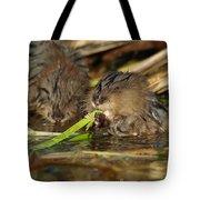 Cutest Water Rats Tote Bag
