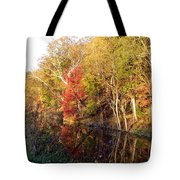 Cuyahoga Valley National Park Autumn Color Tote Bag