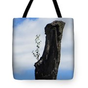 Cycle Of Life Tote Bag