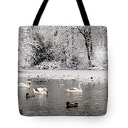 Cygnets In Winter Tote Bag