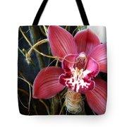 Cymbidium Flower Tote Bag