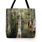 Cypres Swamp-1 Tote Bag