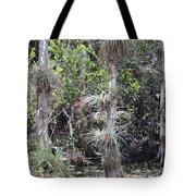 Cypress Airplant Display Tote Bag