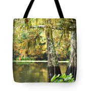 Cypress And Moss Tote Bag