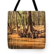 Cypress Arch Tote Bag