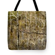 Cypress Branches Tote Bag