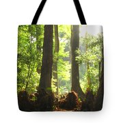 Cypress Forest Tote Bag