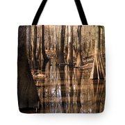 Cypress Hall Tote Bag