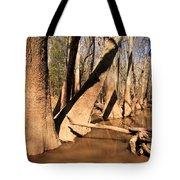 Cypress Hallway Tote Bag