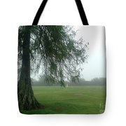 Cypress In The Mist Tote Bag