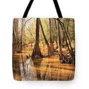 Cypress In The Swamp Tote Bag