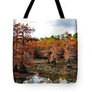 Cypress Isles Tote Bag