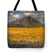 Cypress Marsh Tote Bag