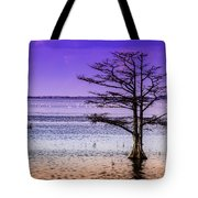 Cypress Purple Sky 2 Tote Bag