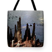 Cypress Roots Tote Bag