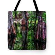 Cypress Secrets Tote Bag