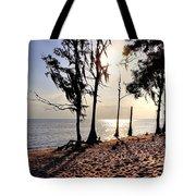 Cypress Shore Tote Bag