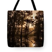 Cypress Sunrise Tote Bag