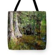 Cypress Trees 4021 Tote Bag