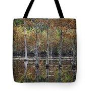 Cypress Tree Fall Reflections Tote Bag