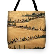 Cypress Tree Lined Road Tote Bag