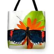 Cythera Butterfly Tote Bag