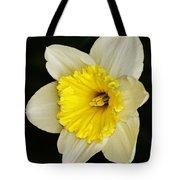 Daffodil 2014 Tote Bag