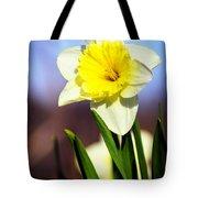 Daffodil Blossom Tote Bag