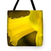 Daffodil Dewdrops Tote Bag