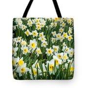 Daffodil Field 2 Tote Bag