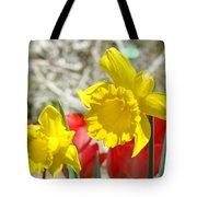 Daffodil Flowers Art Prints Spring Daffodils Red Tulip Garden Tote Bag by Baslee Troutman