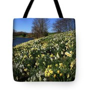 Daffodil Hill Tote Bag