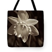 Daffodil In Black And White Tote Bag