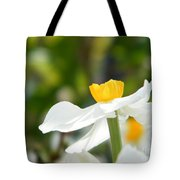 Daffodil In Profile Tote Bag