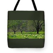 Daffodil Meadow Tote Bag