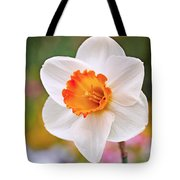 Daffodil  Tote Bag by Rona Black