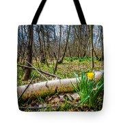 Daffodils And Birch Tote Bag