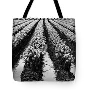 Daffodils Forever Tote Bag
