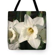 Dafodil171 Tote Bag