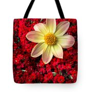 Dahlia And Kalanchoe Tote Bag