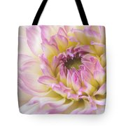 Dahlia Delight Square  Tote Bag