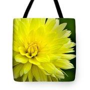 Dahlia Dream Tote Bag