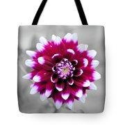 Dahlia Flower 2 Tote Bag