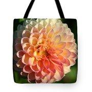 Dahlia Hue Tote Bag